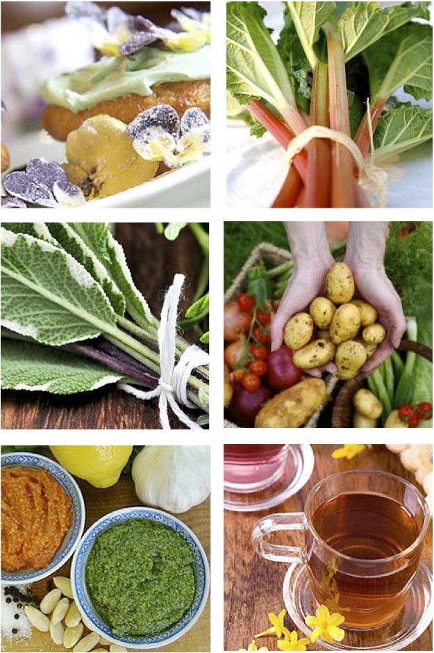 Food charmian christie 39 s portfolio for Canadian gardening tips